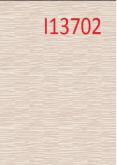 I13702