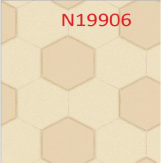 N19906